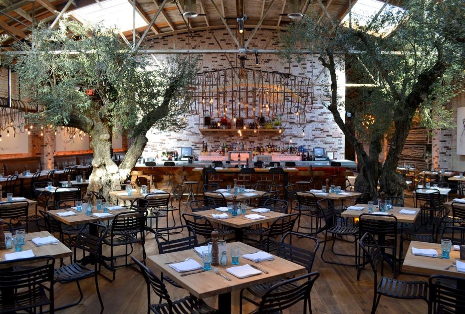 Cafe In La Jolla California
